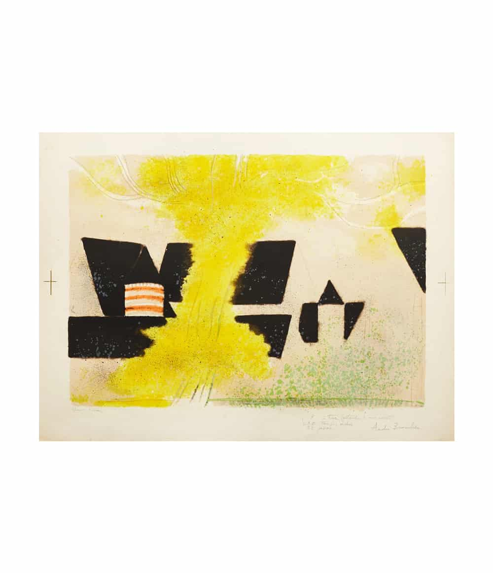 andre brasilier signed lithograph